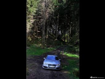森林背景S7外观